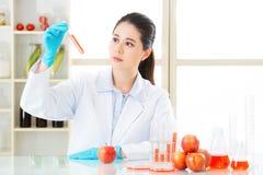 Η γενετική τροποποίηση είναι όχι μόνο τρόπος για το σχέδιο τροφίμων Στοκ Φωτογραφία