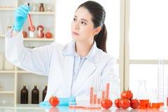 Η γενετική τροποποίηση είναι όχι μόνο τρόπος για το σχέδιο τροφίμων Στοκ εικόνες με δικαίωμα ελεύθερης χρήσης