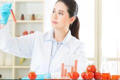 Η γενετική τροποποίηση μπορεί να είναι υγιής ή όχι Στοκ Εικόνες
