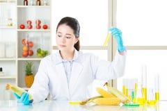 Η γενετική τροποποίηση μπορεί να είναι υγιής ή όχι Στοκ Φωτογραφίες