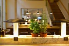 Η Γερμανία Βερολίνο, το ιταλικό εστιατόριο, το εστιατόριο μπουφέδων, η εσωτερική κομψή και θερμή, σύγχρονη μόδα σχεδίου είναι πολ Στοκ φωτογραφία με δικαίωμα ελεύθερης χρήσης