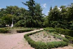 Η γεωμετρική μορφή στο πάρκο πόλεων φυτεύεται με τους θάμνους πυξαριού Η πορεία για το περπάτημα κατά μήκος στοκ εικόνες με δικαίωμα ελεύθερης χρήσης