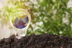 Η γη στη λάμπα φωτός μεγαλώνει το λ, έννοια μέσα εκτός από τον κόσμο, ενέργεια και η συντήρηση περιβάλλοντος, στοιχεία αυτής της  Στοκ Φωτογραφία