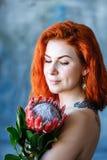 Η γοητεία της ρομαντικής θηλυκής γυναίκας κρατά το κόκκινο protea στο μπλε υπόβαθρο Στοκ Φωτογραφίες