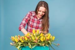 Η γοητεία του θηλυκού ανθοκόμου ταξινομεί τις τουλίπες στο κιβώτιο, τις επιλέγει για τη μελλοντική ρύθμιση λουλουδιών στοκ εικόνες