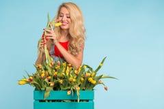 Η γοητεία του ξανθού θηλυκού ανθοκόμου ταξινομεί τις τουλίπες στο κιβώτιο, τις επιλέγει για τη μελλοντική ρύθμιση λουλουδιών στοκ φωτογραφίες με δικαίωμα ελεύθερης χρήσης