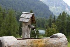 Η γούρνα Στοκ φωτογραφία με δικαίωμα ελεύθερης χρήσης
