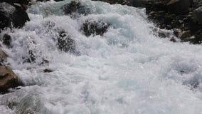 Η γρήγορη ροή των νερών ενός ρεύματος βουνών φιλμ μικρού μήκους