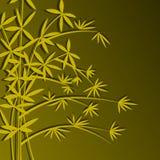 η γρήγορη χλόη μπαμπού που αναπτύσσει πολλούς μοιάζει με το δέντρο πραγμάτων μίσχων χρησιμοποιούμενο πολύ Στοκ εικόνα με δικαίωμα ελεύθερης χρήσης