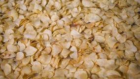 Η γραμμή εργοστασίων παραγωγής κινεί τα χρυσά τσιπ πατατών μετά από να τηγανίσει, σε αργή κίνηση φιλμ μικρού μήκους