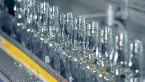 Η γραμμή μπουκαλιών με τους ραβδωτούς λαιμούς κινείται κατά μήκος της μεταφέροντας ζώνης απόθεμα βίντεο