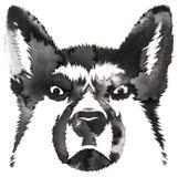 Η γραπτή μονοχρωματική ζωγραφική με το νερό και το μελάνι σύρουν την απεικόνιση σκυλιών ελεύθερη απεικόνιση δικαιώματος