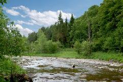 Η γραφική κοιλάδα ποταμών βουνών που περιβάλλεται από το δάσος στοκ εικόνες