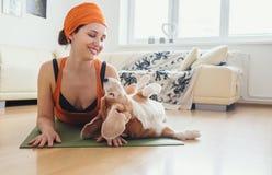 Η γυναίκα έχει την πρακτική γιόγκας στο σπίτι αλλά το σκυλί προσπαθεί να παίξει με την στοκ εικόνα