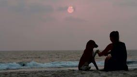 Η γυναίκα αγκαλιάζει το σκυλί της στο ηλιοβασίλεμα απόθεμα βίντεο