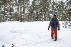 Η γυναίκα αναρριχείται στο λόφο βαθιά snowdrifts στο χειμερινό δάσος Στοκ φωτογραφία με δικαίωμα ελεύθερης χρήσης