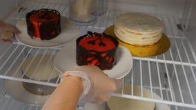 Η γυναίκα βάζει το γλυκό κέικ στο ψυγείο Κέικ στο ψυγείο στοκ φωτογραφία με δικαίωμα ελεύθερης χρήσης