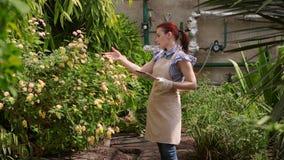 Η γυναίκα γεωπόνων με την ταμπλέτα διευθύνει την επιθεώρηση της ανάπτυξης των συγκομιδών και βάζει τους δείκτες φιλμ μικρού μήκους