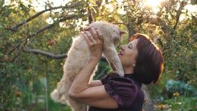 Η γυναίκα ιδιοκτητών αγαπά τη γάτα της απόθεμα βίντεο