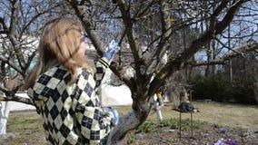 Η γυναίκα κηπουρών έκοψε τον κλαδίσκο φιλμ μικρού μήκους