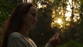 Η γυναίκα κοιτάζει στο φύλλο φτερών που εκτίθεται να εξισώσει τις ακτίνες ήλιων απόθεμα βίντεο