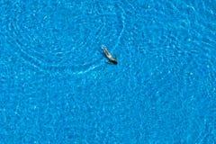 Η γυναίκα κολυμπά σε μια πισίνα επάνω από την όψη Στοκ Φωτογραφία
