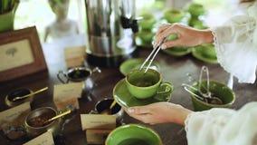 Η γυναίκα κρατά ένα πράσινο φλυτζάνι πορσελάνης του τσαγιού και βάζει ένα φύλλο μεντών σε το φιλμ μικρού μήκους