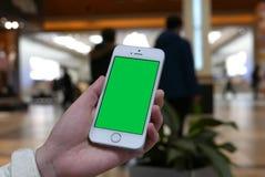 Η γυναίκα κρατά μια κενή έξυπνη συσκευή με μια πράσινη οθόνη για το περιεχόμενο συνήθειάς σας Στοκ Εικόνα