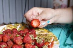 Η γυναίκα κρατά τη φράουλα στο χέρι του Κρατά το χέρι της σε ένα πιάτο των φραουλών Στοκ φωτογραφία με δικαίωμα ελεύθερης χρήσης