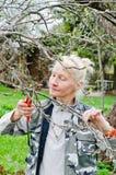Η γυναίκα κόβει έναν κλάδο σε ένα Apple-δέντρο στον κήπο Στοκ φωτογραφίες με δικαίωμα ελεύθερης χρήσης