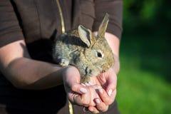 Η γυναίκα με ένα κουνέλι λαγουδάκι έχει ένα Πάσχα στοκ φωτογραφία με δικαίωμα ελεύθερης χρήσης