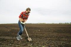 Η γυναίκα με το αιχμηρό φτυάρι προσπαθεί σκάβει το έδαφος Στοκ Εικόνες