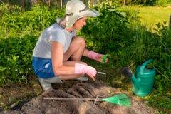 Η γυναίκα με το ψαλίδι κόβει τη συσκευασία σπόρου στο υπόβαθρο του α Στοκ Εικόνα