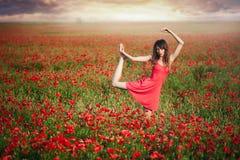 Η γυναίκα ομορφιάς μέσα ο χορεύοντας τομέας παπαρουνών φορεμάτων στο ηλιοβασίλεμα, η καθαρότητα και η αθωότητα, ενότητα με τη φύσ Στοκ Εικόνες