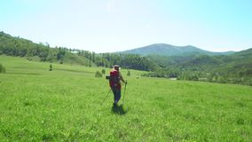 Η γυναίκα ο ταξιδιώτης με τα ραβδιά τουριστών και με ένα κόκκινο σακίδιο πλάτης αναρριχείται κάτω από ένα πράσινο βουνό Κατόπιν η απόθεμα βίντεο