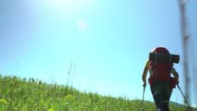 Η γυναίκα ο ταξιδιώτης με τον τουρίστα κολλά και με ανόδους τις κόκκινες σακιδίων πλάτης από το πράσινο βουνό απόθεμα βίντεο