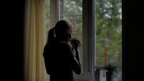 Η γυναίκα πίνει ένα ζεστό ποτό από ένα φλυτζάνι που στέκεται στο παράθυρο και εξετάζει τη βροχή μέσω του ποτηριού απόθεμα βίντεο