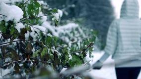 Η γυναίκα παραδίδει το τίναγμα χειμερινών γαντιών από το χιόνι από τους κλάδους στα όμορφα χιονώδεις δασικός σε αργή κίνηση πυροβ φιλμ μικρού μήκους