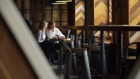 Η γυναίκα παρουσιάζει πληροφορίες πελατών για το lap-top στον καφέ απόθεμα βίντεο