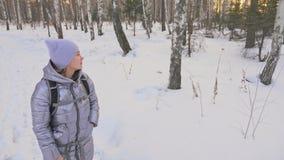 Η γυναίκα περπατά στα ξύλα Ο ταξιδιώτης είναι περίπατος στο δάσος σημύδων στο πάρκο πόλεων Περίπατοι κοριτσιών στο χρόνο βραδιού  φιλμ μικρού μήκους