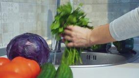 Η γυναίκα πλένει μια δέσμη του μαϊντανού απόθεμα βίντεο