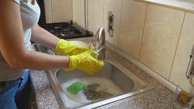 Η γυναίκα πλένει τα πιάτα απόθεμα βίντεο