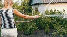 Η γυναίκα ποτίζει τις εγκαταστάσεις στον κήπο της από μια μάνικα απόθεμα βίντεο
