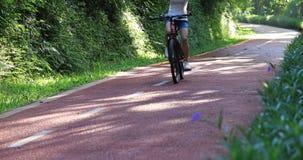 Η γυναίκα που οδηγά ένα ποδήλατο στο ηλιόλουστο ίχνος πάρκων με τα όπλα φιλμ μικρού μήκους