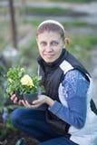 Η γυναίκα που φυτεύει το viola λουλουδιών στο α στοκ φωτογραφίες