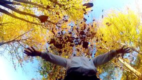 Η γυναίκα ρίχνει τα φύλλα πτώσης στον αέρα