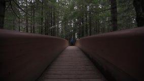 Η γυναίκα στα θερμά ενδύματα διασχίζει την ξύλινη γέφυρα προς τη κάμερα απόθεμα βίντεο