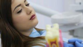 Η γυναίκα στην κλινική οδοντιάτρων είναι ο ακούοντας γιατρός και εξέταση το πρότυπο δοντιών απόθεμα βίντεο