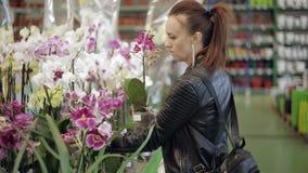 Η γυναίκα στην υπεραγορά, στο τμήμα εγκαταστάσεων κήπων και σπιτιών επιλέγει το εσωτερικό δοχείο λουλουδιών φιλμ μικρού μήκους