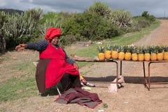 Η γυναίκα στο κόκκινα φόρεμα και το καπέλο πωλεί τους ανανάδες από την άκρη του δρόμου στο αγροτικό Transkei, Νότια Αφρική στοκ εικόνες με δικαίωμα ελεύθερης χρήσης